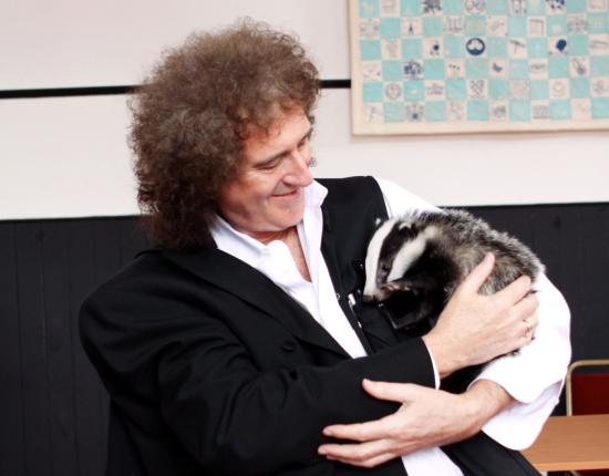 Brian-May-Badger