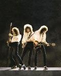 Brian May - Photo-0002