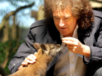 Brian May with fox