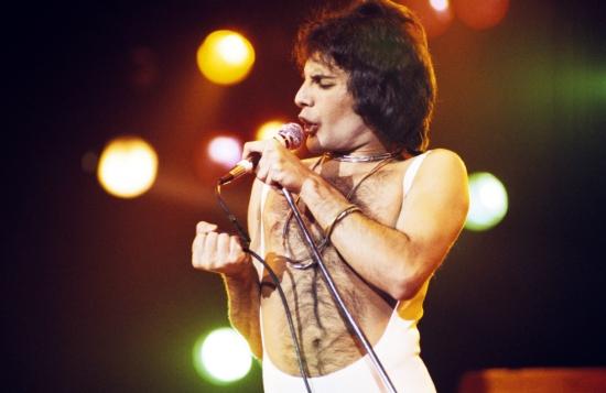 Freddie 081