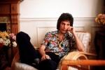 Freddie Interview
