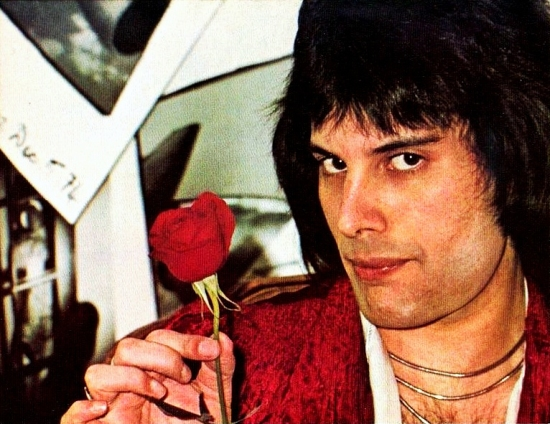 Freddie with rose