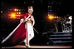 Royal Freddie 002