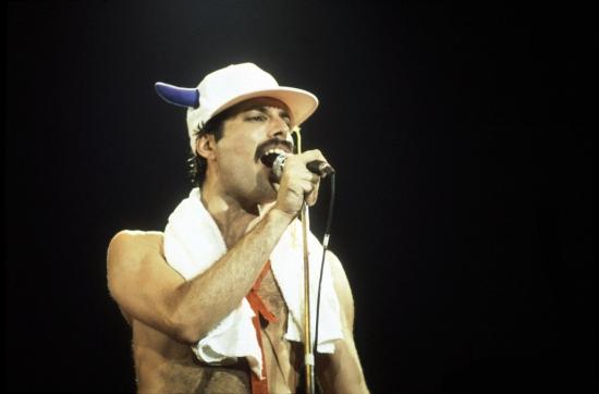 Freddie Image 287