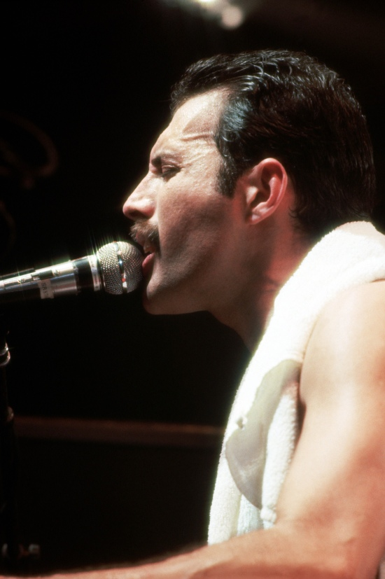 Freddie Mercury Big Picture 001