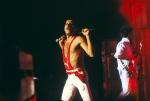 Freddie Mercury Performs