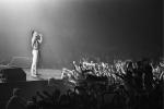 Freddie Mercury live at the Groenoordhallen in Leiden, Holland, 1982