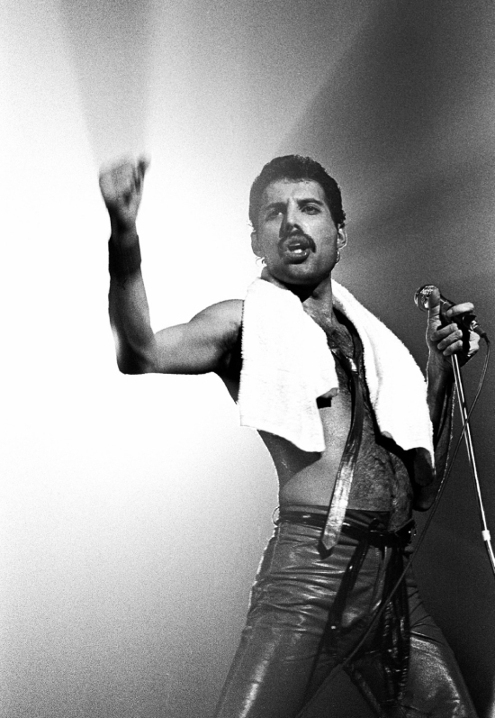 Freddie Mercury Picture 335