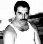 Freddie Mercury - Portret
