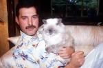 Freddie Mercury with cat
