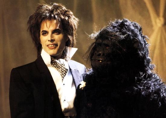 freddie-mercury-and-gorilla