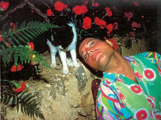 freddie-mercury-with-cat-photo